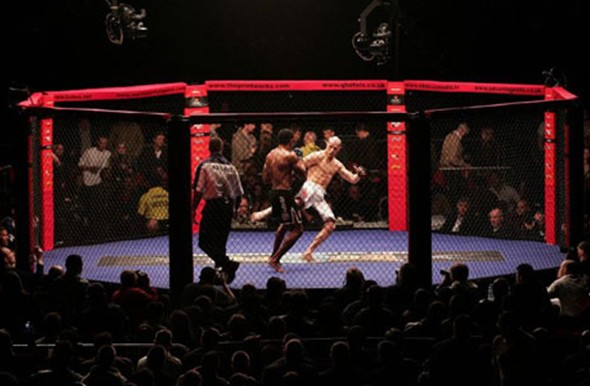 Kilde: http://fighterfitness.org/wp-content/uploads/2010/03/cage-fighting.jpg