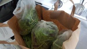 Første grønnsakskasse fra Evje gård